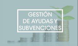 Gestión de ayudas y subvenciones en Castellón